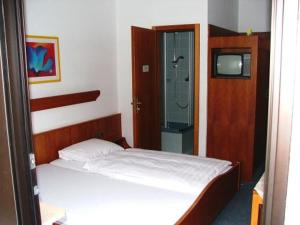 Photo hotel HOTEL PENSION FREY