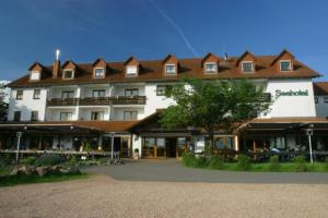 photo seehotel losheim