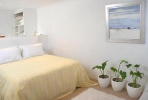 photo hotel whale view guest house