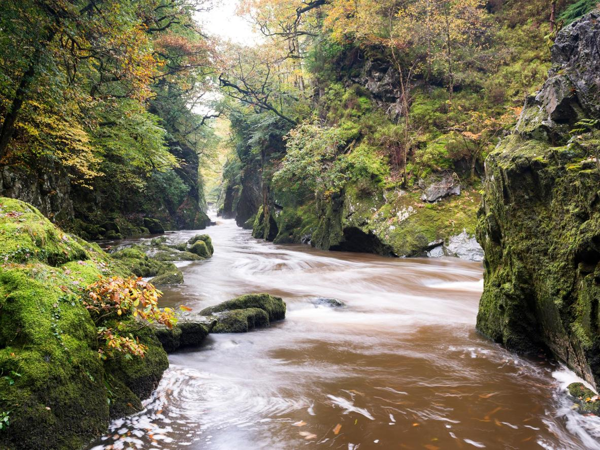 Visit The Fairy Glen at Betws-y-Coed in Snowdonia