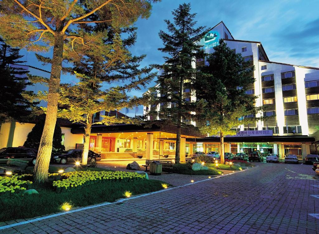 Yongpyong Resort Dragon Valley Hotel 龙平度假村龙谷酒店