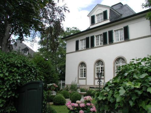 Hotel Bastgen Bed & Breakfast, Wittlich