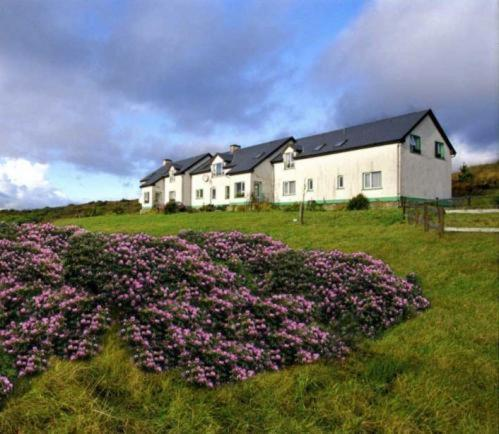 Moorland-Guesthouse, Laghy