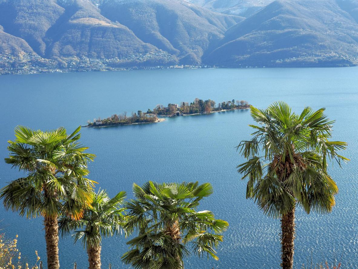 Brissago Islands are home to distinctly tropical flora