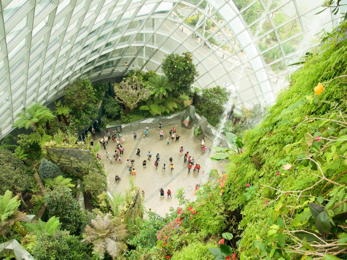 The Cloud Forest is home to the world's largest indoor waterfall