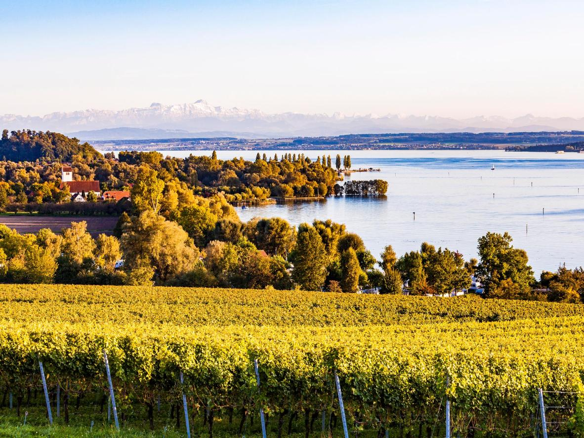 Cycle the beautiful Bodensee-Radweg, a 273km-long trail that hugs the lake shore